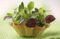 Fresh herbs :: Styling: Orsola Ciriello Kogan | Photo ©LuciaZeccara